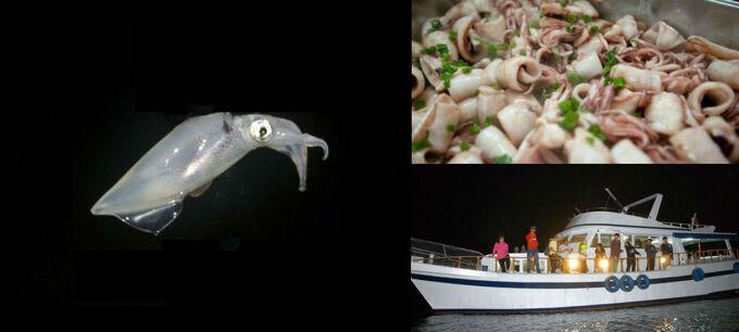 《※季節推介:  4月30日(星期二)》遊艇夜CHOK墨魚 + 船上享用【 到會晚餐】晚間遊 *(大小同價‧免小費) (原價: $329)