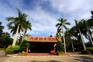 熱帶植物園