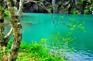 長白山綠淵潭