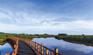 濕地紅樹灣
