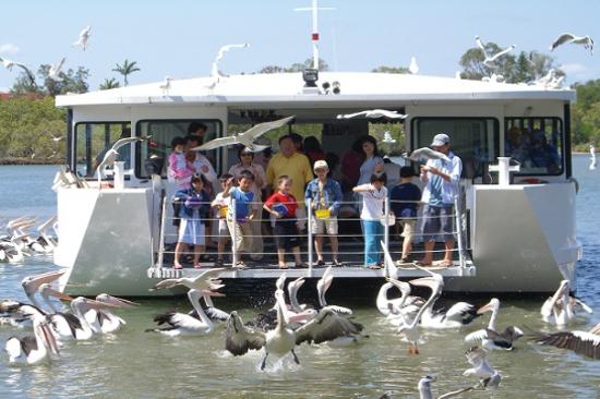 翠兒河遊船