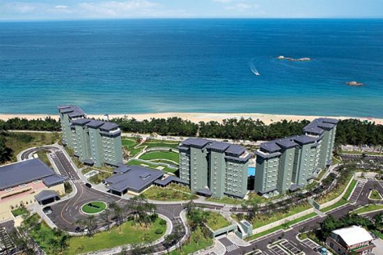 江陵 La Kai Sand pine Resort