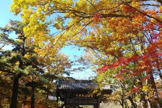 雪嶽山國立公園~新興寺