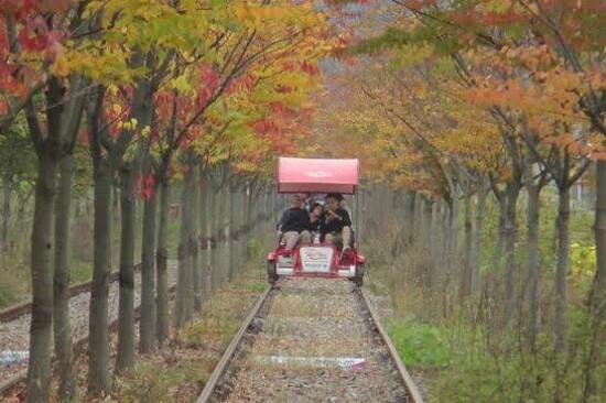 江村Rail Bike體驗