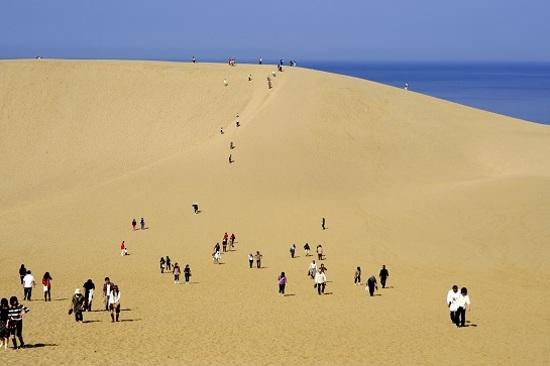 鳥取砂丘4