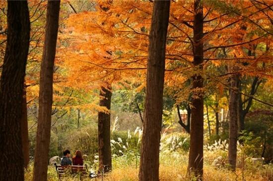 八公山道立公園