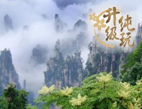 【國泰港龍】長沙、張家界(天子山、袁家界、天門山國家森林公園)、鳳凰古城、常德 6天升級純玩團