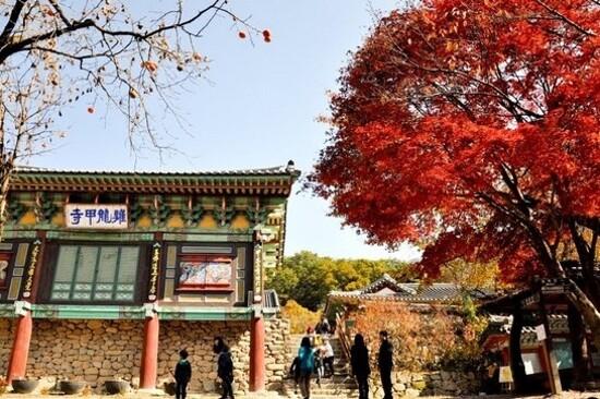 雞龍山國立公園~甲寺