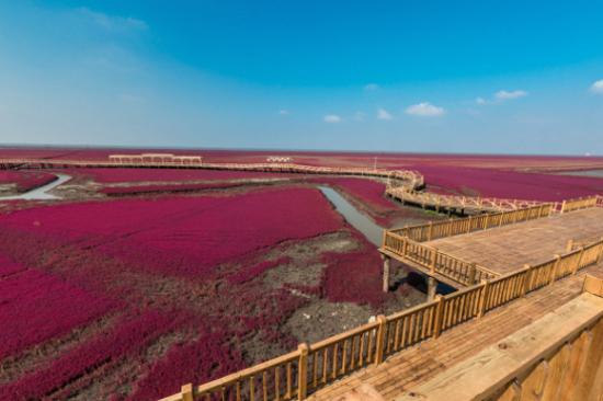 紅海灘國家風景廊道-廊橋愛夢