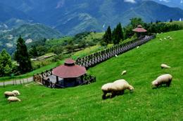 台灣環島7天觀光之旅