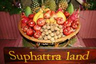Suphattra Land水果園~品嚐時令水果
