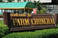 Farm Chok Chai