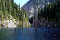Kaindy湖