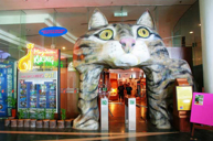 貓貓博物館