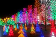 LED數碼夢幻森林