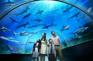海洋生物園~S.E.A.海洋館
