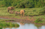 阿伯岱爾國家公園