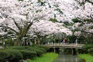 「賞櫻名所」「日本三大名園」金澤兼六園