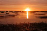 七股潟湖生態區