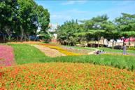 台灣首創荔枝主題樂園~就是愛荔枝樂園