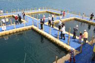 半潛艇遊青灣+海上浮台海洋牧場