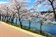 慶州普門湖觀光園地