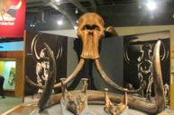 極地博物館及極地展示中心