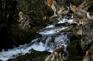 神農架自然保護區