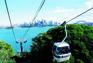 塔龍加動物園觀光吊車