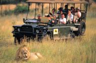 安特班尼私人野生動物保護區