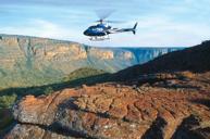 乘坐直升機高空觀賞野生動物生態