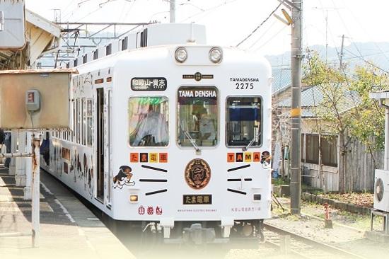 特色觀光列車