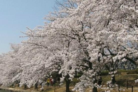 慶州普門湖