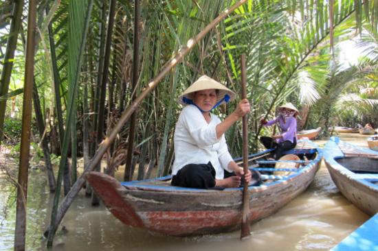 熱帶雨林沼澤
