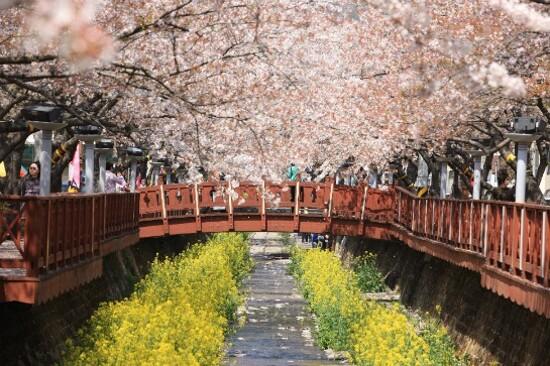 余佐川浪漫橋