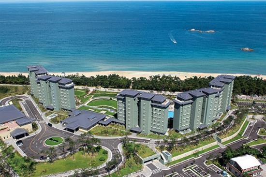 江陵LaKai Sandpine Resort