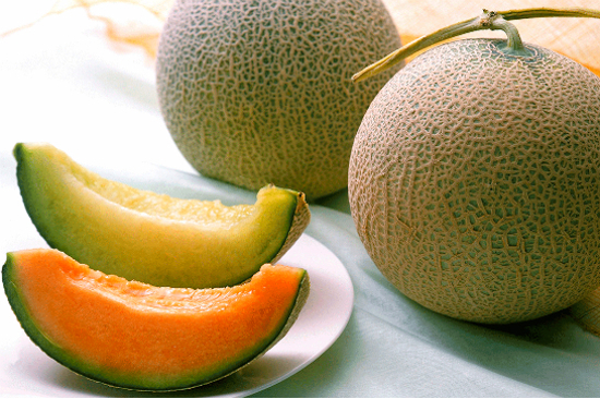 北海道蜜瓜