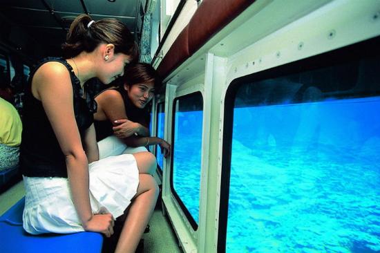 水中潛望觀光船Marine Star