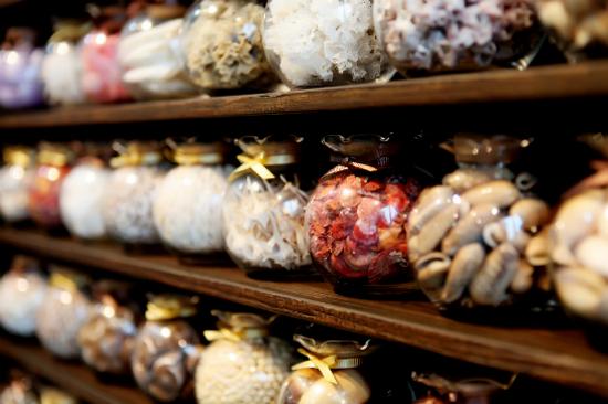 世界貝殼博物館