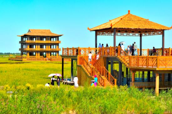 紅海灘國家風景廊道 - 稻夢空間