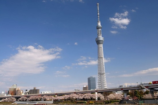 Sky Tree(遠眺)