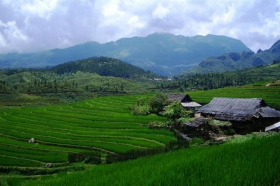 越南小阿爾卑斯~沙壩