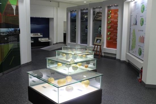 羅州梨博物館