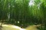 潭陽竹綠苑