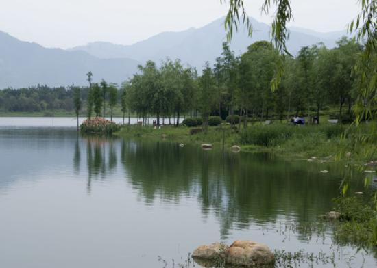 飛來湖濕地公園