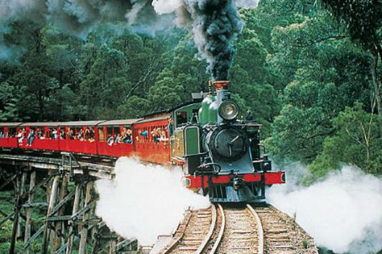PuffingBilly古董蒸氣火車