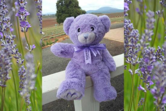 Bobbie Bear