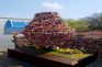 N 首爾塔公園