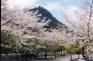 內臟山國立公園