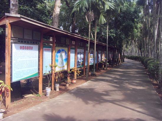海南農墾萬嘉果熱帶植物園